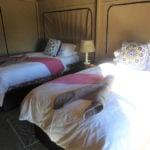 Elephant Sands Adventure Lodge Tent Interior